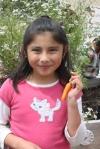 Harvesting Carrots!